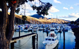 havelock_marina