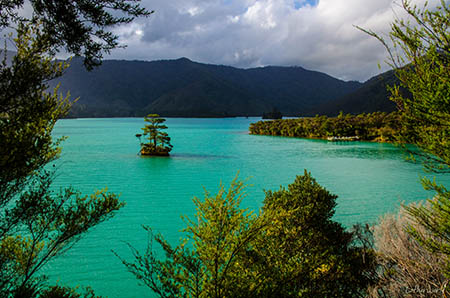marlborough-sounds-scenic-2